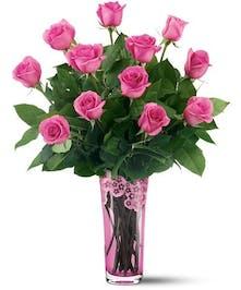 Galloway Roses