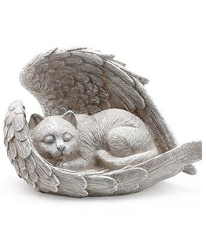 Feline Sleeping with Angels