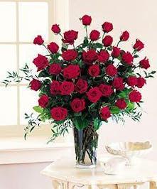 48 Beautiful Red Roses