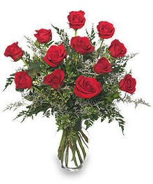 Dozen Red Roses with Accent Flowers