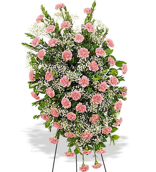 Traditional Carnation Easel Spray