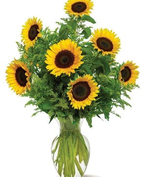 Bright Sunflowers in a Glass Vase