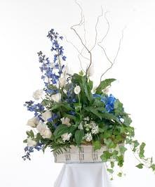 Blue & White Plants & Flowers