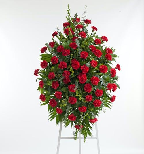 Red Carnation Easel Spray