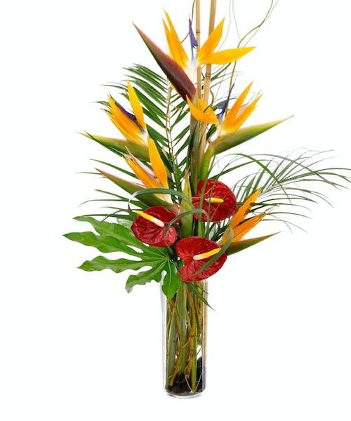 Classic Tropical Vase