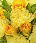 Yellow Rose & Yellow Carnation Easel Spray