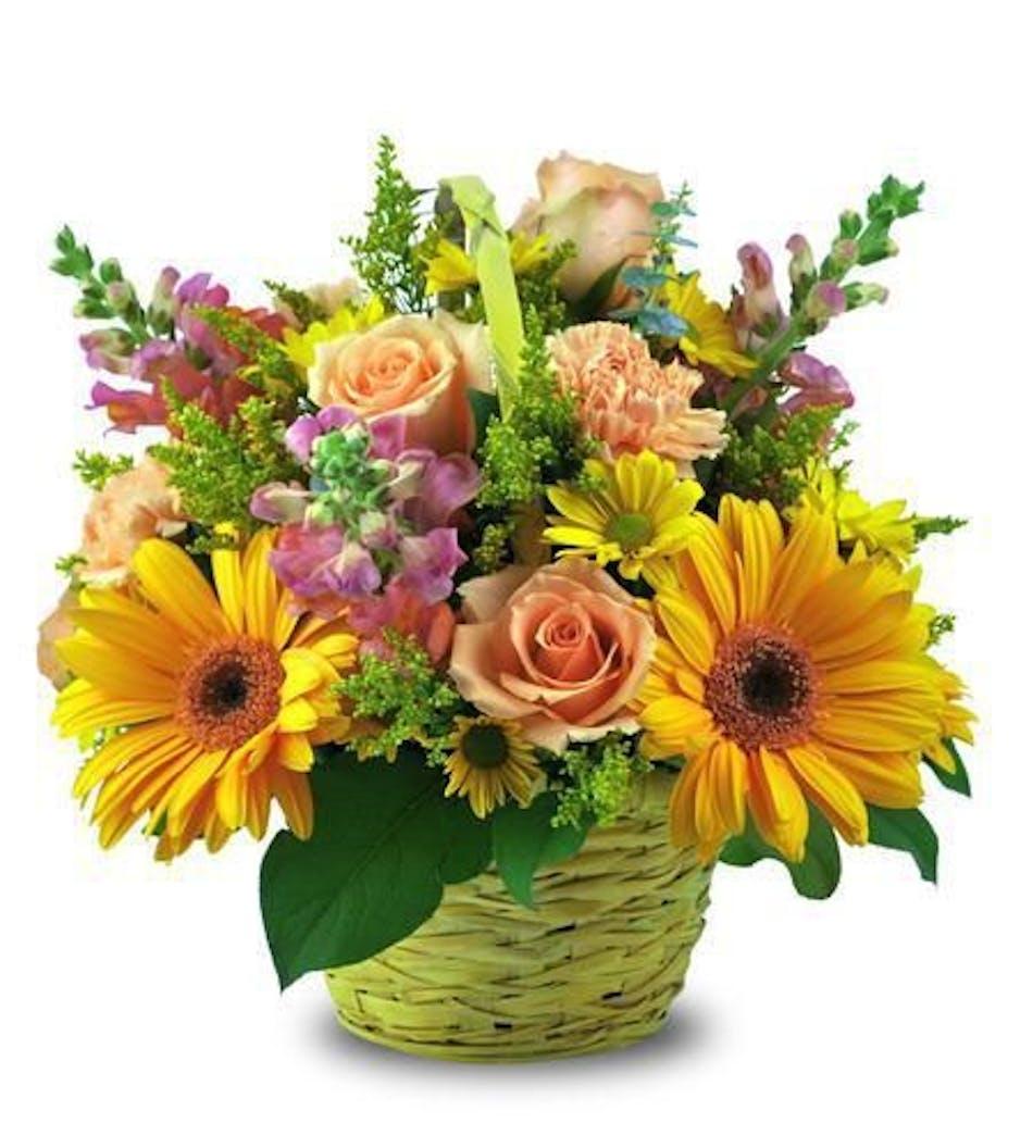 Sunshine Surprise Basket, Scottsdale Arizona Florist And