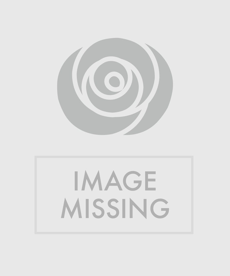 Flowers Hand Delivered Scottsdale Arizona Florist And Chandler