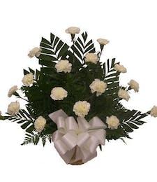 White Carnation Tribute
