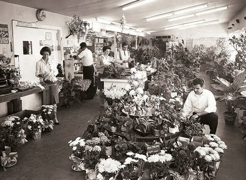 Our busy staff tends to arrangements and takes phone orders in our shop, circa 1970